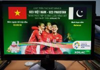Nhóm 3 kênh trực tiếp bóng đá tại Việt Nam có thể bạn chưa biết