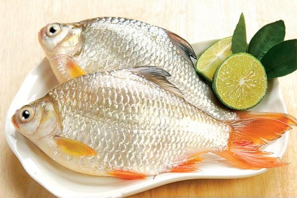 các món ngon từ cá chép